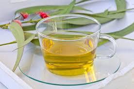 care-sunt-beneficiile-ceaiului-de-eucalipt